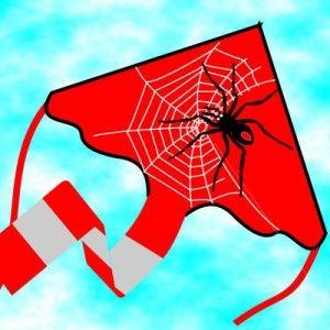 Spider Delta Kite