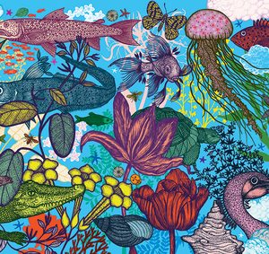 Djeco Gallery Puzzle Land & Sea 1000pce