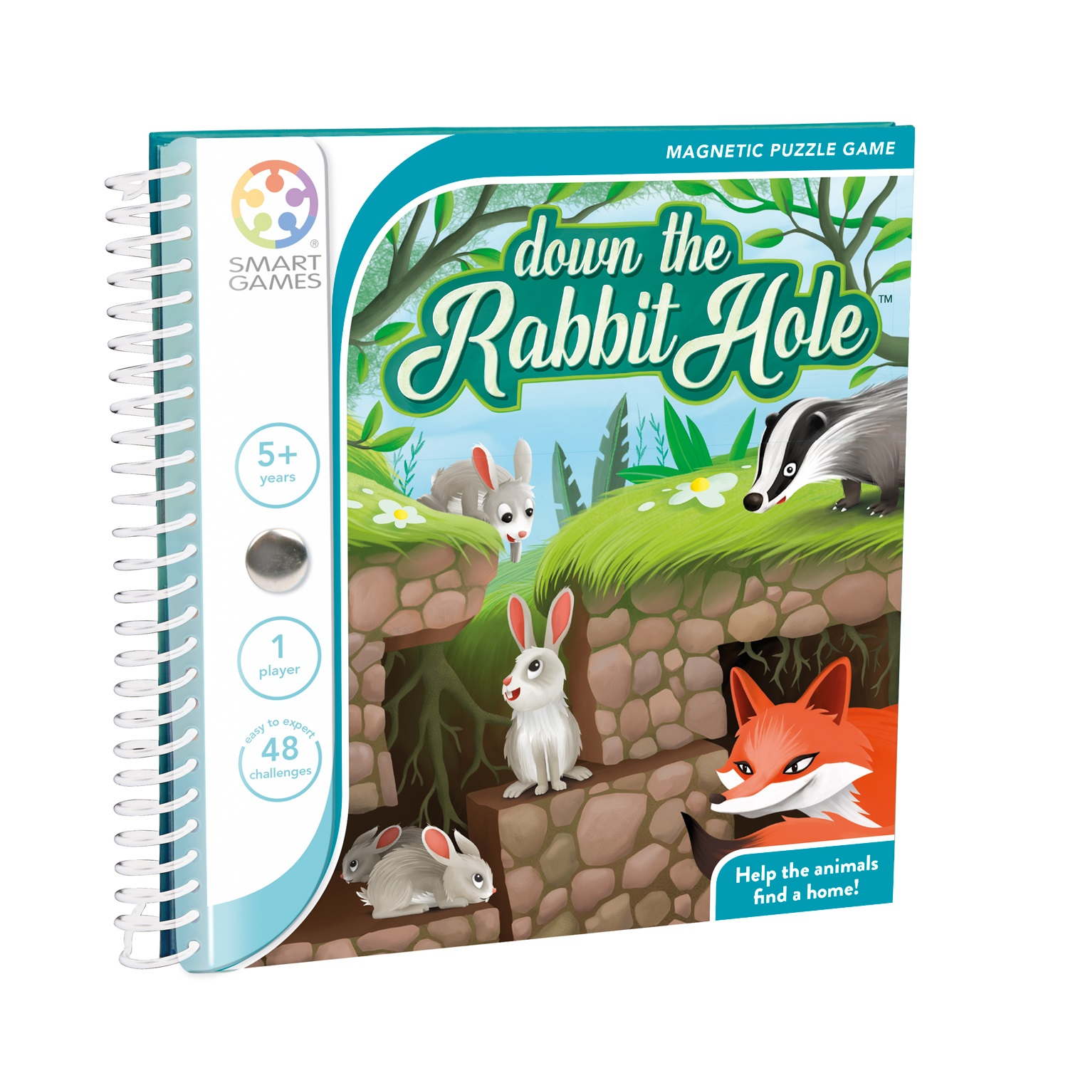 Down the Rabbit Hole Magnetic Game
