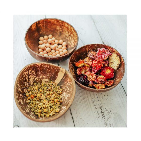 Explore Nook Coconut Bowl