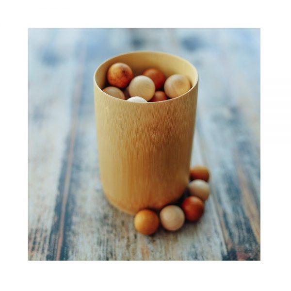 Explore Nook Bamboo Cup